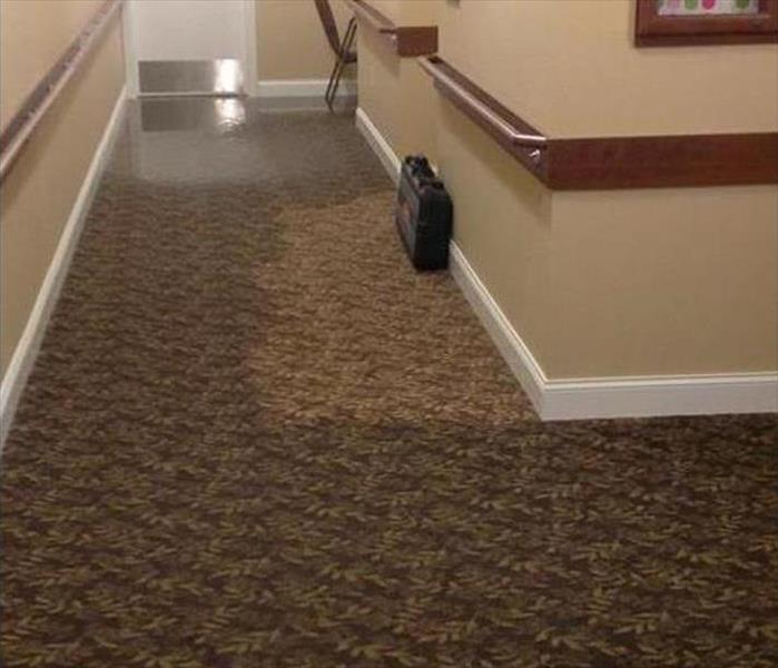 carpeted hallway with water on and soaking into it