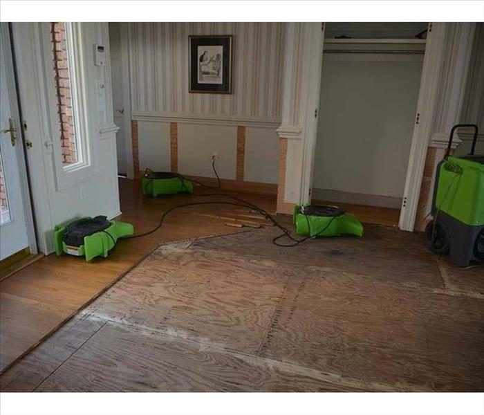 cut and removed hardwood planks, drying equipment working, exposed subfloor sheathing