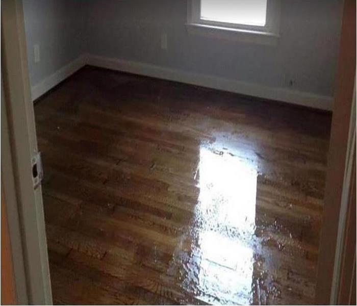 standing water on hardwood floor