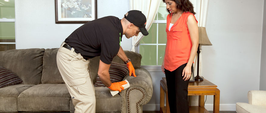 Coral Springs, FL carpet upholstery cleaning
