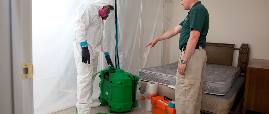 Coral Springs, FL mold removal process